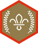 chief-scouts-gold-award-scouts-rgb-png