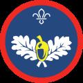 Natrualist Badge Scout